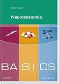 Neuroanatomie - Basics