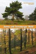 Senne und Teutoburger Wald