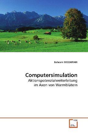Computersimulation (eBook, PDF)