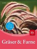 Gräser & Farne
