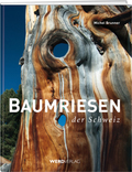 Baumriesen der Schweiz