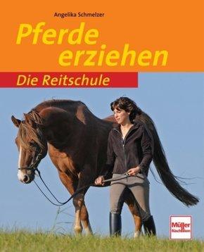 Pferde erziehen