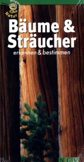 Bäume & Sträucher erkennen & bestimmen