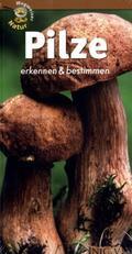 Pilze erkennen & bestimmen