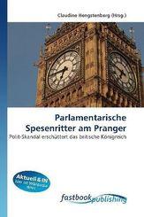 Parlamentarische Spesenritter am Pranger