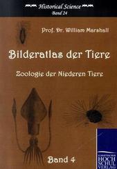 Bilderatlas der Tiere - Bd.4