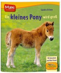 Ein kleines Pony wird groß