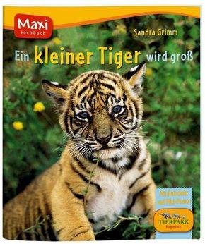 Ein kleiner Tiger wird groß