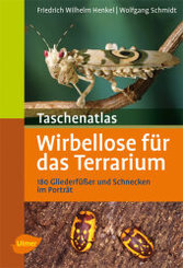 Taschenatlas Wirbellose für das Terrarium