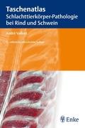 Taschenatlas Schlachttierkörper-Pathologie bei Rind und Schwein