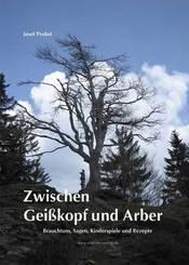 Zwischen Geißkopf und Arber
