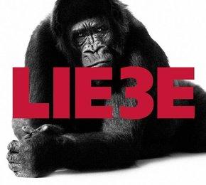 Lie3e, Audio-CD