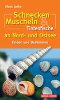 Schnecken, Muscheln & Tintenfische an Nord- und Ostsee