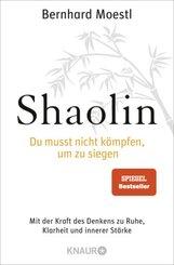 Shaolin - Du musst nicht kämpfen, um zu siegen