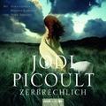 Zerbrechlich, 6 Audio-CDs