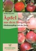 Äpfel aus dem Biogarten