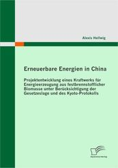 Erneuerbare Energien in China