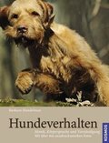 Hundeverhalten