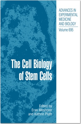 The Cell Biology of Stem Cells
