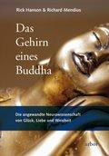 Das Gehirn eines Buddha