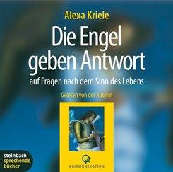 Die Engel geben Antwort, 2 Audio-CDs