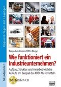 Wirtschaft verstehen, m. CD-ROM