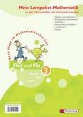 Flex und Flo, Ausgabe 2007: Mein Lernpaket Mathematik (Verbrauchsmaterial), 4 Hefte; Bd.3