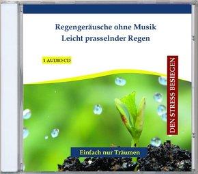 Regengeräusche ohne Musik - Leicht prasselnder Regen, 1 Audio-CD