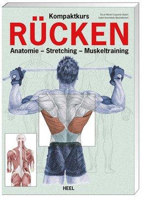 Kompaktkurs Rücken - Anatomie, Muskeltraining, Stretching