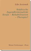 Städtische Jugendkriminalität - Strafe - Rehabilitation - Therapie?