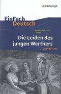 Johann Wolfgang von Goethe 'Die Leiden des jungen Werthers'