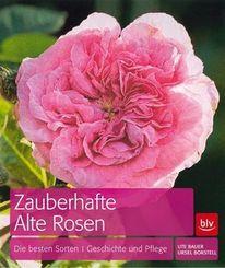Zauberhafte Alte Rosen