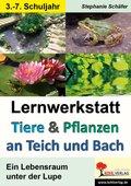 Lernwerkstatt Tiere & Pflanzen an Teich und Bach