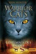 Warrior Cats, Geheimnis des Waldes
