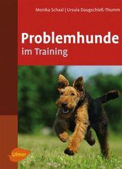 Problemhunde im Training