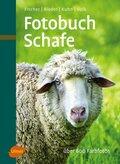 Fotobuch Schafe