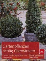 Gartenpflanzen richtig überwintern