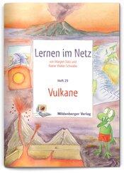 Lernen im Netz: Vulkane