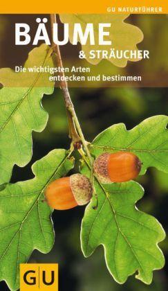 Bäume & Sträucher - Die wichtigsten Arten entdecken und bestimmen