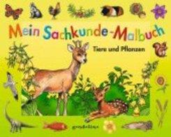 Mein Sachkunde-Malbuch Tiere und Pflanzen (grün)
