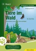 Tiere im Wald für die Kita