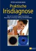 Praktische Irisdiagnose