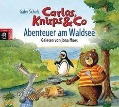 Abenteuer am Waldsee, 1 Audio-CD