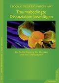 Traumabedingte Dissoziation bewältigen, m. CD-ROM