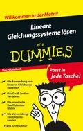 Lineare Gleichungssysteme lösen für Dummies