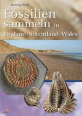 Fossilien sammeln in England - Wales - Schottland