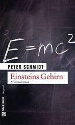 Einsteins Gehirn - Kriminalroman