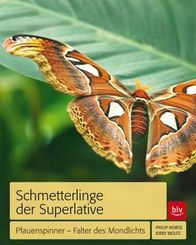 Schmetterlinge der Superlative