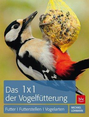 Das 1 x 1 der Vogelfütterung - Futter, Futterstellen, Vogelarten