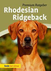 Rhodesian Ridgeback